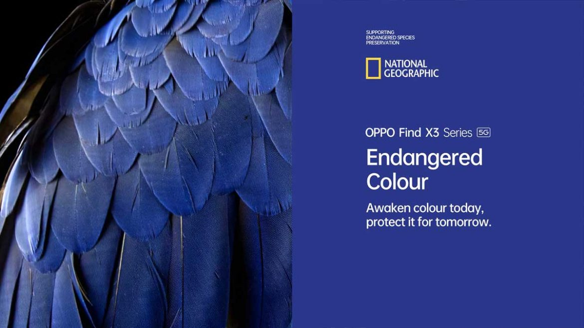 oppo e national geographic endangered colour